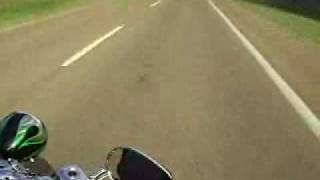 7. 2009 Harley Davidson Softail Springer CVO FXSTSSE