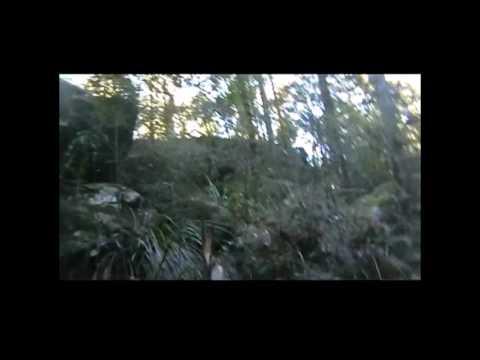 Glenbrook Yowie Video from June 2013 (видео)