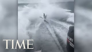 "Florida wildlife officials are investigating a ""disturbing"" video shared on social media that appears to show a shark being dragged by a rope behind a speed boat.Subscribe to TIME ►► http://po.st/SubscribeTIME Get closer to the world of entertainment and celebrity news as TIME gives you access and insight on the people who make what you watch, read and share.https://www.youtube.com/playlist?list=PL2EFFA5DB900C633F Money helps you learn how to spend and invest your money. Find advice and guidance you can count on from how to negotiate, how to save and everything in between.https://www.youtube.com/playlist?list=PLYOGLpQQfhNKdqS_Wccs94rMHiajrRr4W Find out more about the latest developments in science and technology as TIME's access brings you to the ideas and people changing our world.https://www.youtube.com/playlist?list=PLYOGLpQQfhNIzsgcwqhT6ctKOfHfyuaL3 Let TIME show you everything you need to know about drones, autonomous cars, smart devices and the latest inventions which are shaping industries and our way of livinghttps://www.youtube.com/playlist?list=PL2862F811BE8F5623 Stay up to date on breaking news from around the world through TIME's trusted reporting, insight and accesshttps://www.youtube.com/playlist?list=PLYOGLpQQfhNJeIsW3A2d5Bs22Wc3PHma6CONNECT WITH TIMEWeb: http://time.com/Twitter: https://twitter.com/TIMEFacebook: https://www.facebook.com/time Google+: https://plus.google.com/+TIME/videosInstagram: https://www.instagram.com/time/?hl=enMagazine: http://time.com/magazine/Newsletter: time.com/newsletterABOUT TIMETIME brings unparalleled insight, access and authority to the news. A 24/7 news publication with nearly a century of experience, TIME's coverage shapes how we understand our world. Subscribe for daily news, interviews, science, technology, politics, health, entertainment, and business updates, as well as exclusive videos from TIME's Person of the Year, TIME 100 and more created by TIME's acclaimed writers, producers and editors. Florida Officials Investigate 'Disturbing' Video Of Shark Being Dragged By A Speed Boat  TIMEhttps://www.youtube.com/user/TimeMagazine"