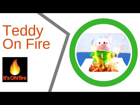 Teddy Bear On Fire