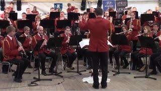 A tribute to Ray Charles - Goriški pihalni orkester
