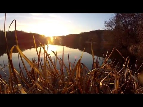 Творческая Мастерская PICASSO™ представляет АПРЕЛЬСКАЯ ОДИССЕЯ (подводные съемки)GoPro HD Relax