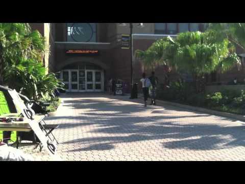 American Law Reports Video-Professor Bast