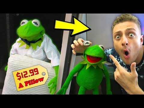Kermit The Door Salesman! (GONE WRONG)