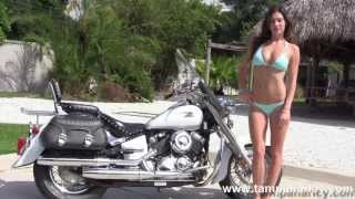 1. Used  Motorcycles For Sale - 2004 Yamaha V Star 650 Classic