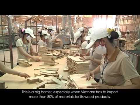 VNHN: Phát triển bền vững ngành công nghiệp chế biến gỗ