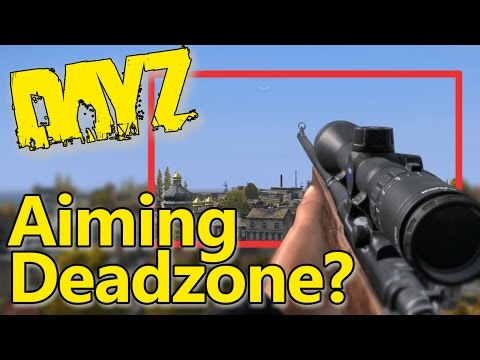 DayZ ~ What is the