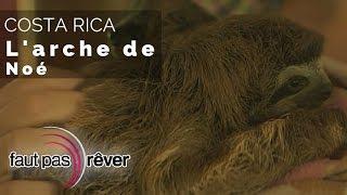 Costa Rica, le paradis vert - l'arche de Noé (reportage complet) - Faut Pas Rêver