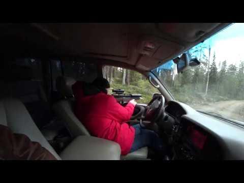 EDgun Matador R5, caliber  30, 100  meters shooting outdoor (видео)