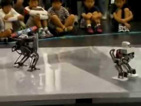 Roboterkampf