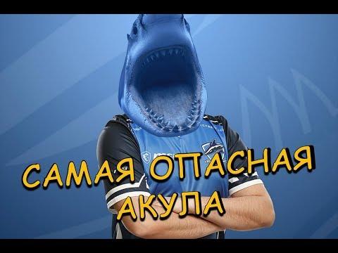 САМАЯ ОПАСНАЯ АКУЛА - DomaVideo.Ru