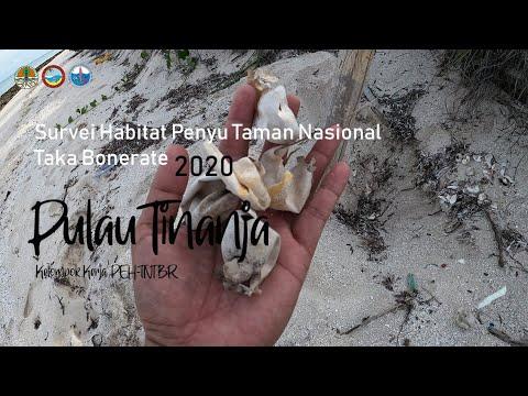 Survei Habitat Penyu P. Tinanja TN Taka Bonerate (Versi Portrait)