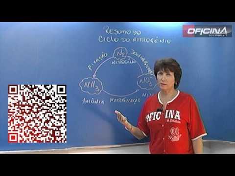 Dica de Biologia - Ciclo do Nitrogênio