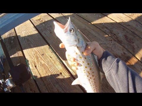 Pier Spanish Mackerel Fishing! – FL Nov 2012