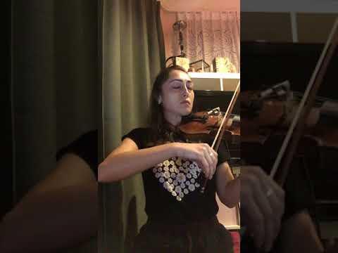 Schindler's List Theme - Violin (видео)