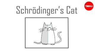 Schrödinger's cat: A thought experiment in quantum mechanics (TED-Ed)