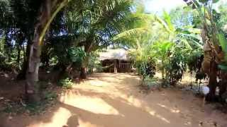 Jungle Cafe, Om beach, Gokarna, India