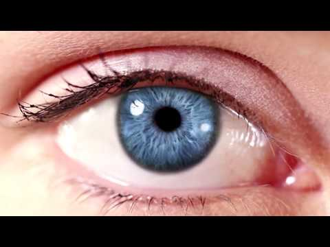 Eye on Research, documentary