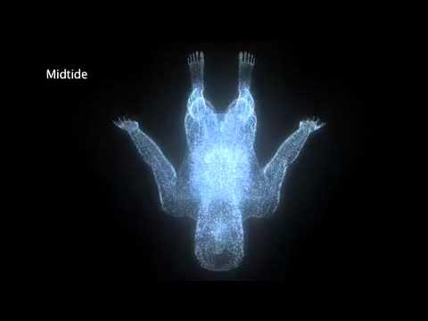 Primární respirace a biodynamické síly