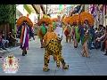 Tradicional recorrido en Zumpango, Guerrero 2017-2018🎉🐯