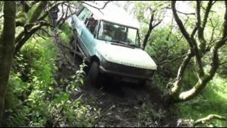 Range Rover Classic Tree Smash!