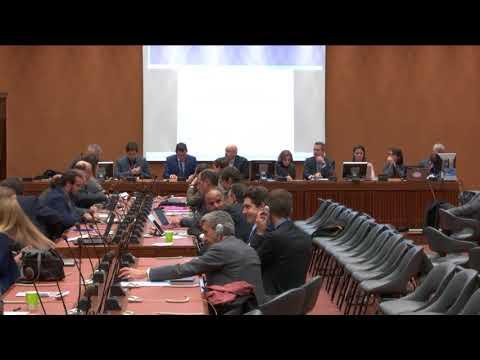 Geneva's Platform for Global Digital Governance