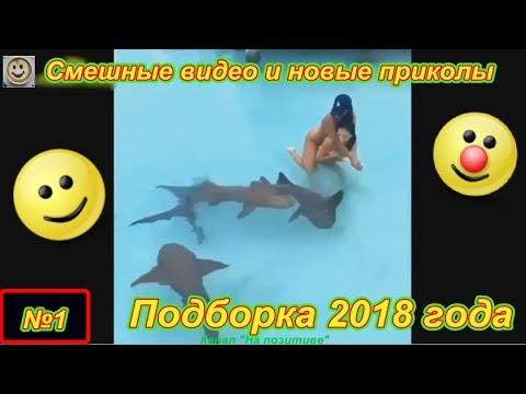 Смешные видео и новые приколы №1 (Подборка за январь 2018)