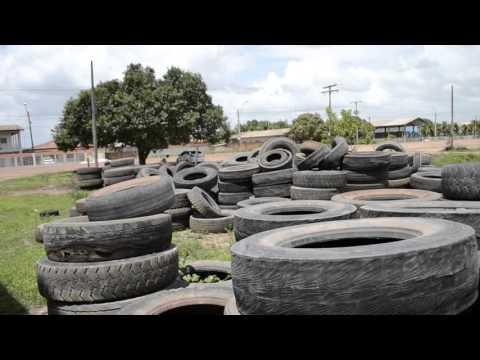 Vídeo mostra larvas de mosquito em montanhas de pneus abandonados em Macapá. SelesNafes.Com