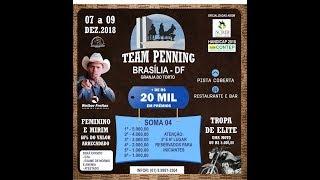 TEAM PENNING BRASILIA/GRNJA DO TORTO 2018