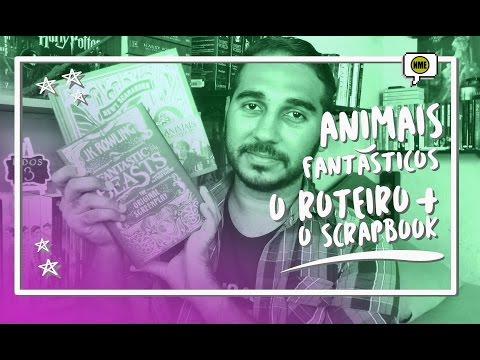 Animais Fantásticos: O Roteiro + O Scrapbook | Na Minha Estante