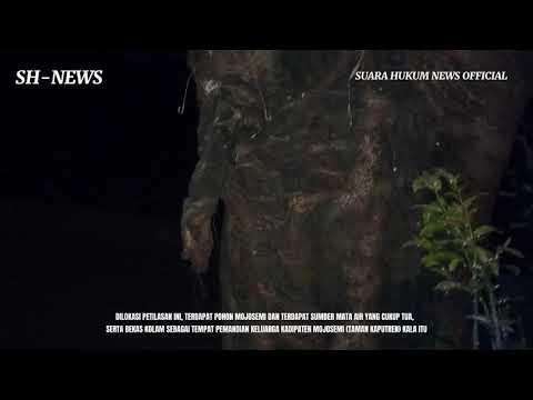 Menelusuri Jejak Sejarah Pati, Dilokasi Petilasan Pohon Mojosemi & Sendang Eyang Sukmonyono