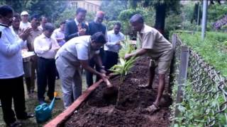 Education Minister Vinod Tawde planted a tree at Mumbai University