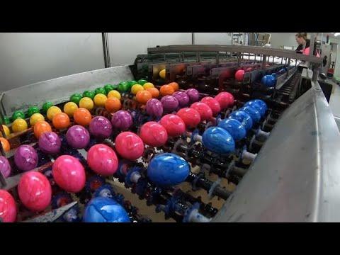 So werden Eier im Akkord gefärbt: 16.000 Stück pro Stunde