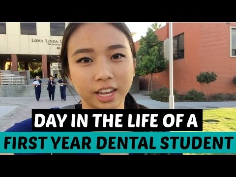 Day in the Life of a First Year Dental Student || Brittany Goes to Dental School