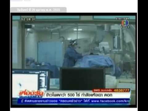 การรักษาโรคมะเร็งด้วยความเย็น.mp4