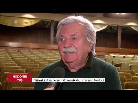 TVS: Deník TVS 20. 2. 2019
