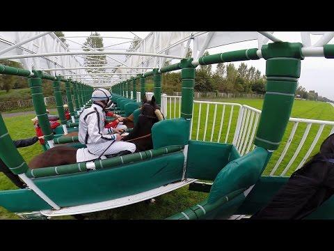 Horse race by jockey´s view extended / Dostih z pohledu žokejky