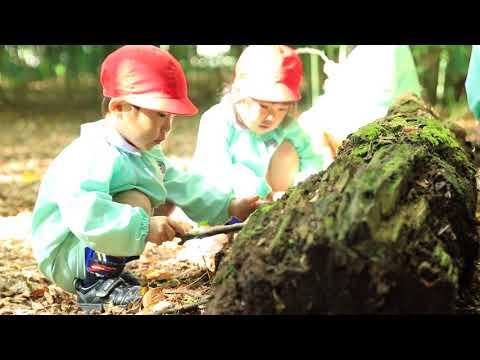 福島学園幼稚園 自然園での様子