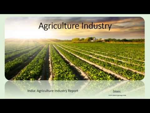 russia market analysis agricultural sector Market research and statistics on russia a regional subscription delivers unrivalled levels of research and analysis for major and small consumer appliances.