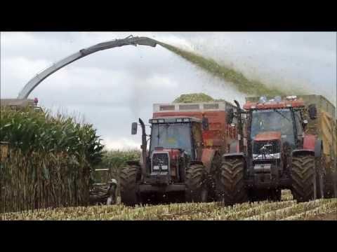 ensilage - Ensilage de maïs au Gaec de Chemy , 4 jours de travail sans relache , 70 ha ensilés pour 1200 bêtes . Avec : Claas Jaguar 900 et un cueilleur 10 rangs condui...