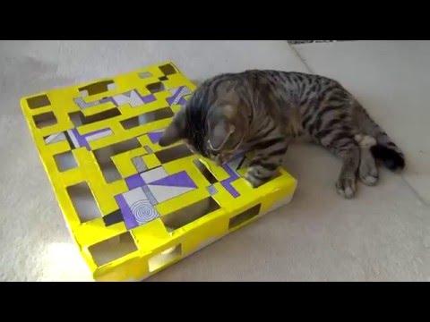 ¡Juego interactivo! Una manualidad muy interesante para los que tengan gatos