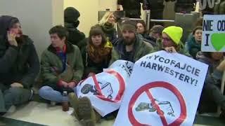 Protest w siedzibie Lasów Państwowych