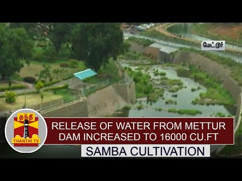 Samba-Cultivation-Release-of-Water-from-Mettur-Dam-increased-to-16000-Cu-ft--Day-Thanthi-TV