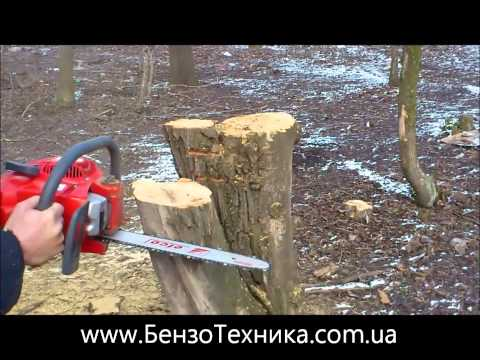 efco - http://www.benzotehnika.com.ua/shop/59/desc/benzopila-efco-137-shina-35-sm.