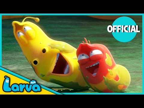 Download LARVA - BEST OF LARVA | Funny Cartoons for Kids | Cartoons For Children | LARVA Official WEEK 3 2017 HD Mp4 3GP Video and MP3