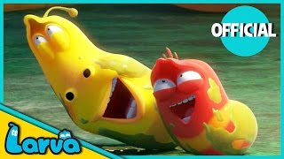 Video LARVA - BEST OF LARVA | Funny Cartoons for Kids | Cartoons For Children | LARVA Official WEEK 3 2017 MP3, 3GP, MP4, WEBM, AVI, FLV Oktober 2018