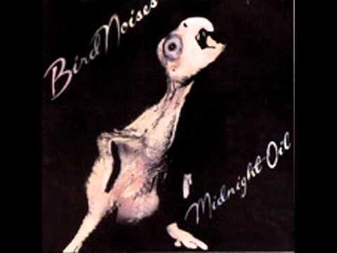 Tekst piosenki Midnight Oil - I'm the cure po polsku