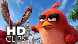 ANGRY BIRDS - Der Film | Filmausschnitte & Trailer | HD (2016)