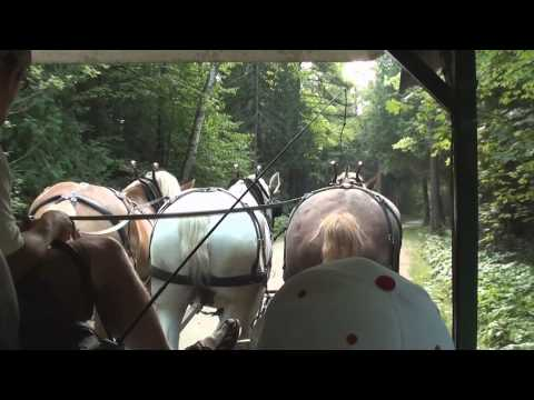 Mackinac Island Carriage Tour (brief excerpts)