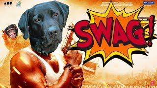Video Bollywood ke Swag Jaanwar feat. Chai Pilo MP3, 3GP, MP4, WEBM, AVI, FLV Februari 2019